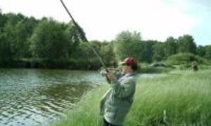 как надо правильно ловить рыбу