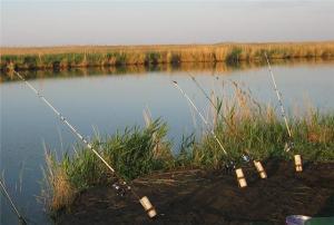 Использование донной снасти при охоте на язя оправдывается лишь во время весны.