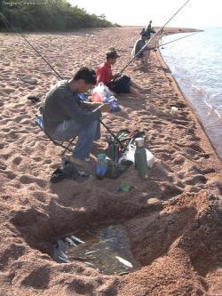 столик на рыбалку купить